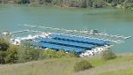 The Lake Sonoma Resort Marina as 7 docks, 3 are covered docks
